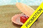 promotion permis bateau